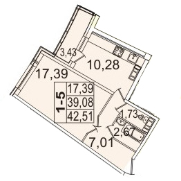 Планировка Однокомнатная квартира площадью 42.51 кв.м в ЖК «Премьер Палас»